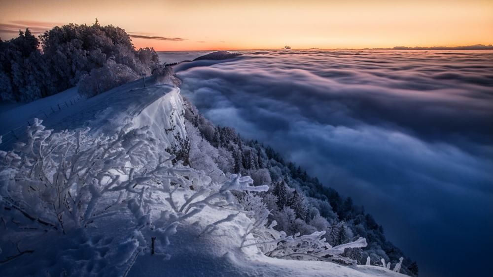 Foggy winter landscape from the Jura Mountains wallpaper