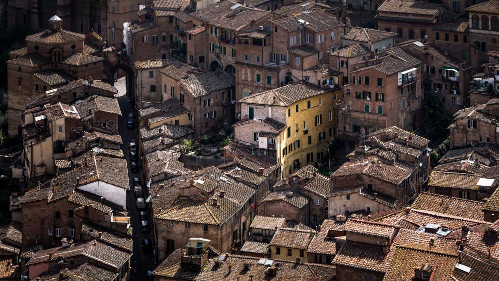 Piazza del Campo wallpaper