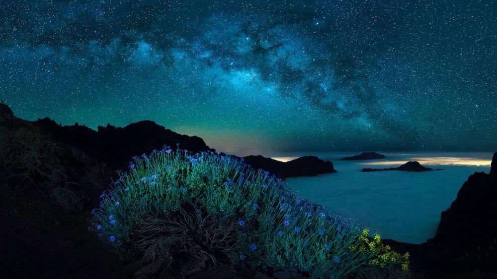 Milky way and polar lights wallpaper