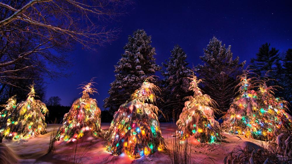 Christmas lights under the snow wallpaper