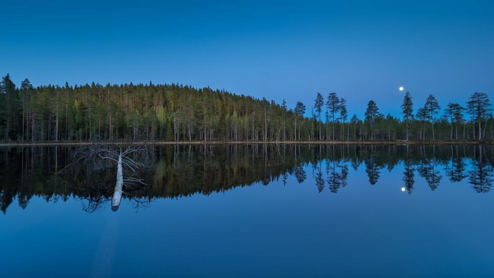 Perfect reflection wallpaper