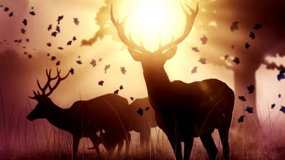 Deers at sunset wallpaper