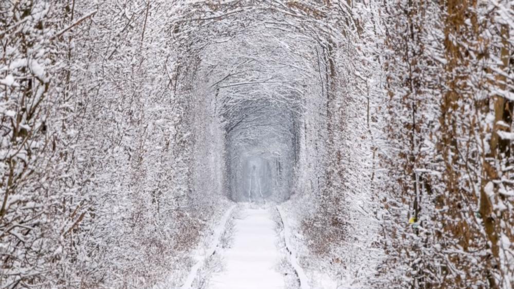 Tunnel of Love at wintertime (Ukraine) wallpaper