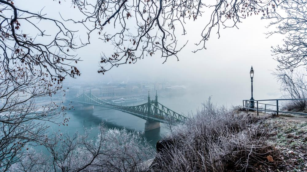 Liberty Bridge from Gellért Hill (Budapest) wallpaper