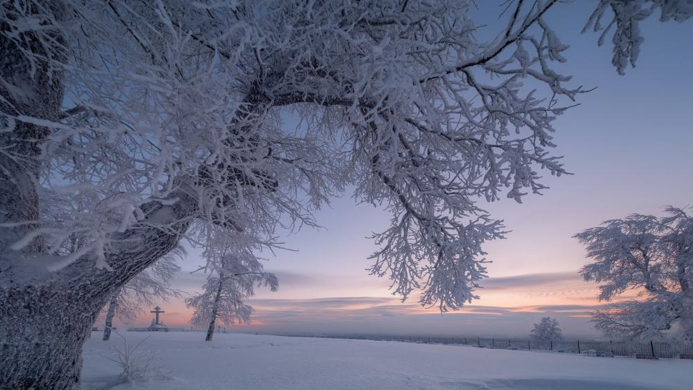 Hoary winter landscape wallpaper