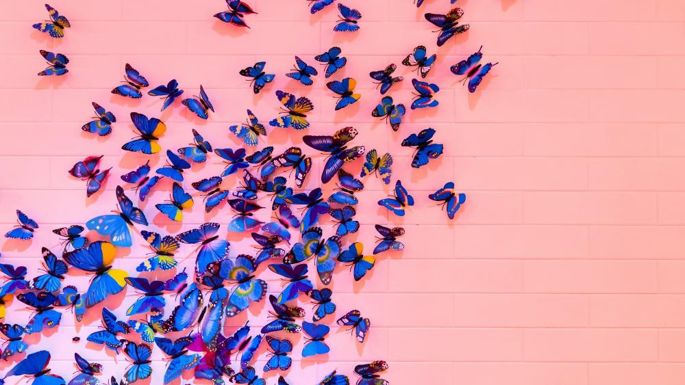Pink wall with blue butterflies wallpaper