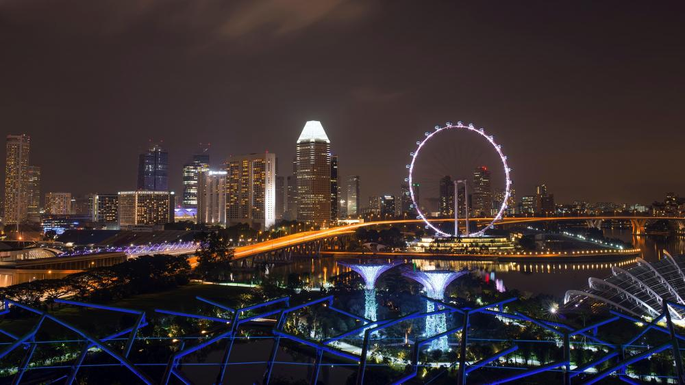 Gardens by the Bay & the Singapore Flyer wallpaper