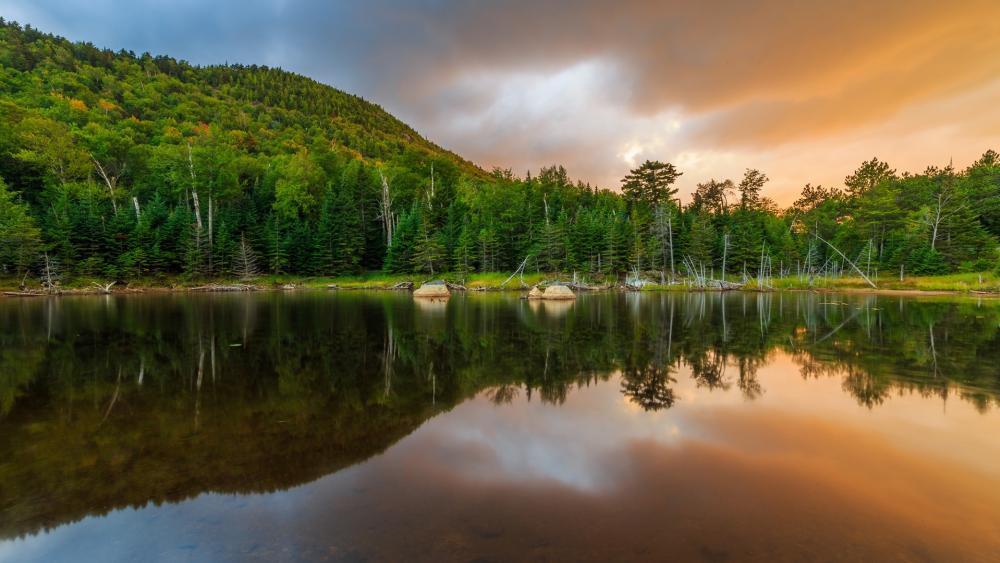 Beautiful reflection wallpaper