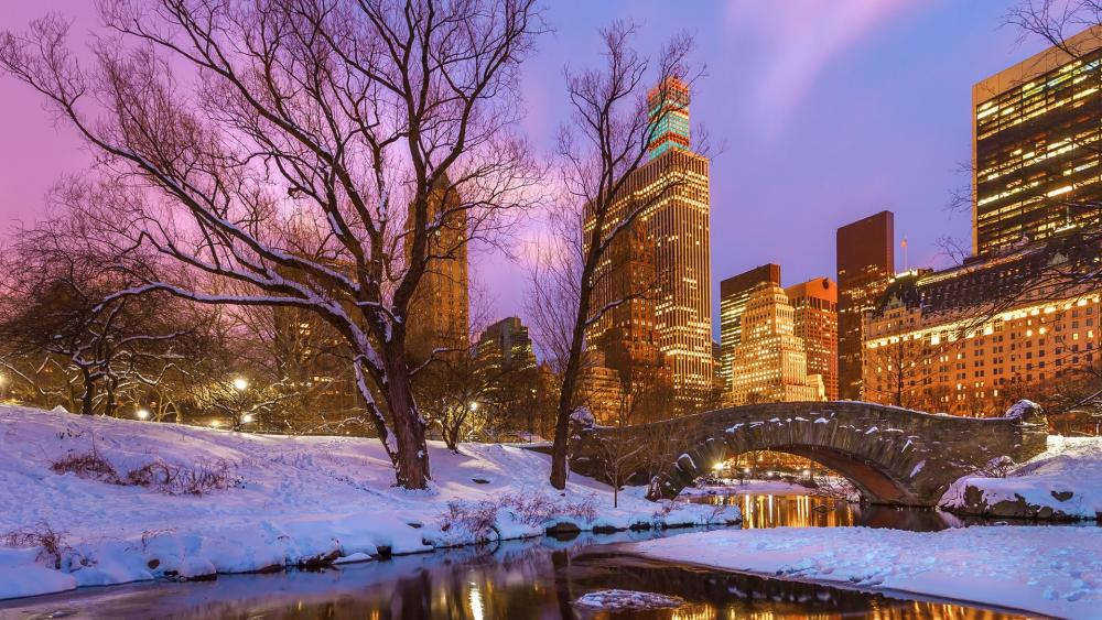Gapstow Bridge (Central Park) in winter wallpaper