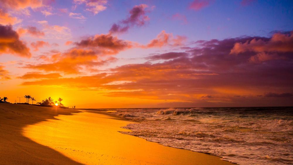 Sandy Beach, Honolulu, Hawaii wallpaper