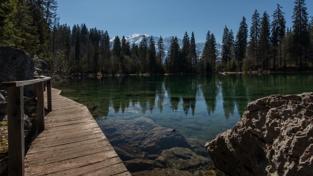 Lac Vert (Green lake) wallpaper