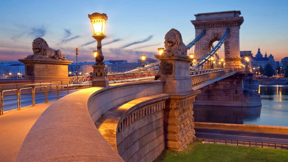 Chain Bridge lions (Budapest, Hungray) wallpaper
