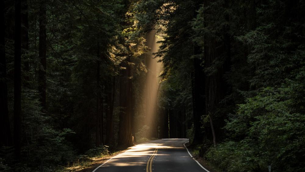 Ray of light wallpaper