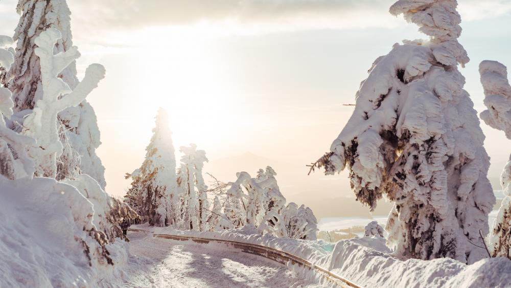 Snow covered mounatin road wallpaper