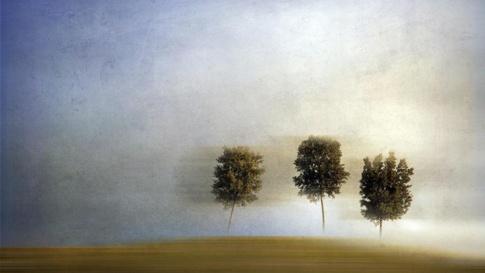 Blurry trees wallpaper
