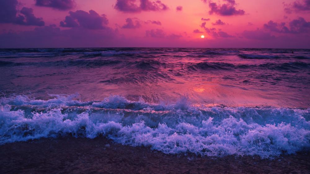 Purple seascape wallpaper
