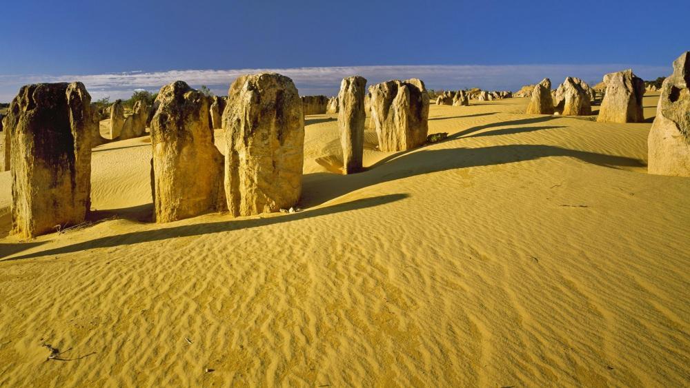 The Pinnacles Desert (Nambung National Park) wallpaper