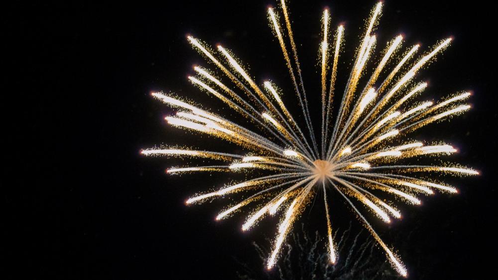 Fireworks in Grosse Pointe wallpaper