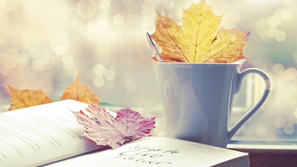 Autumn mood wallpaper