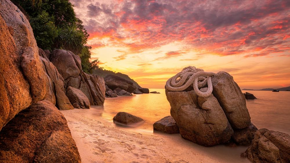 Rope on boulder at the beach wallpaper