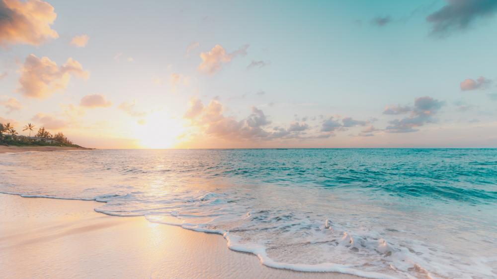 Morning Beach wallpaper