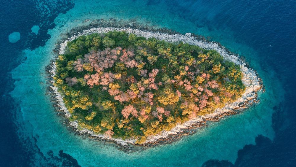 Island form above wallpaper