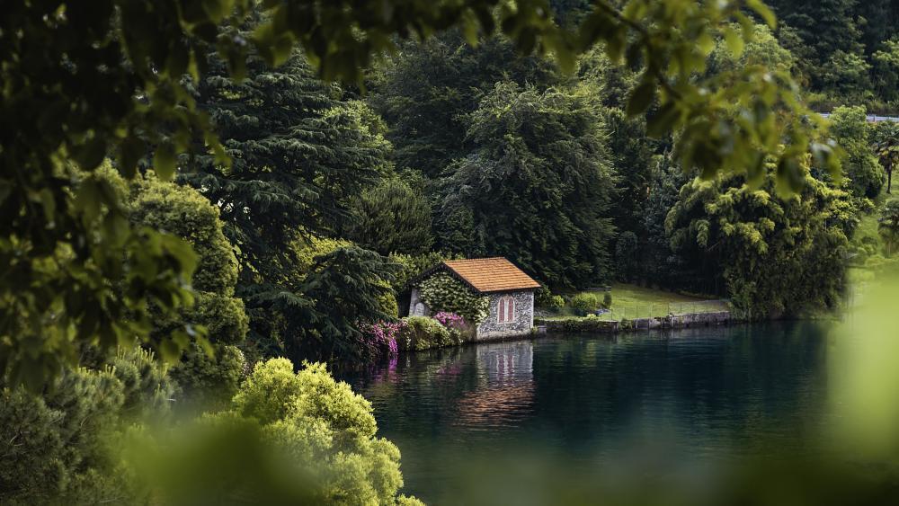 Lakeside cottage wallpaper