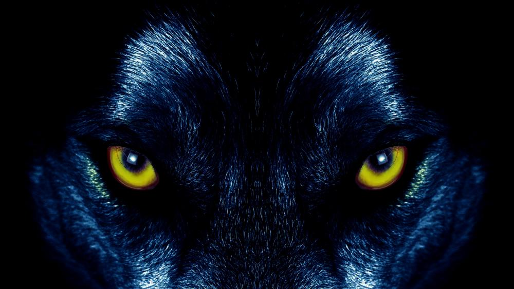 Wolf eyes wallpaper