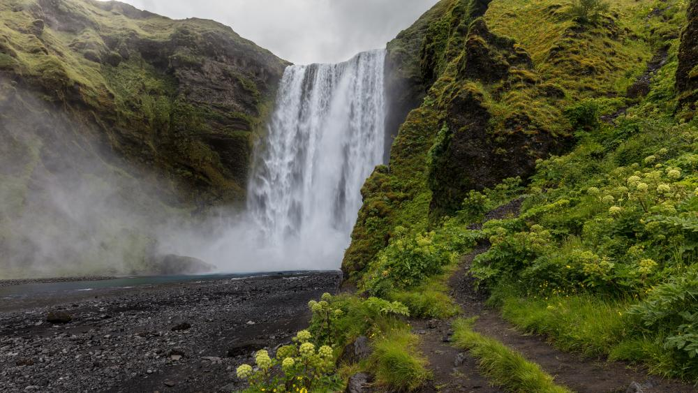 Skogafoss waterfall in summer, Iceland wallpaper