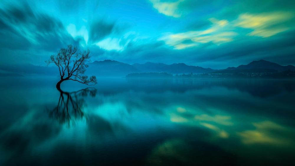 Solitary tree in Lake Wanaka wallpaper