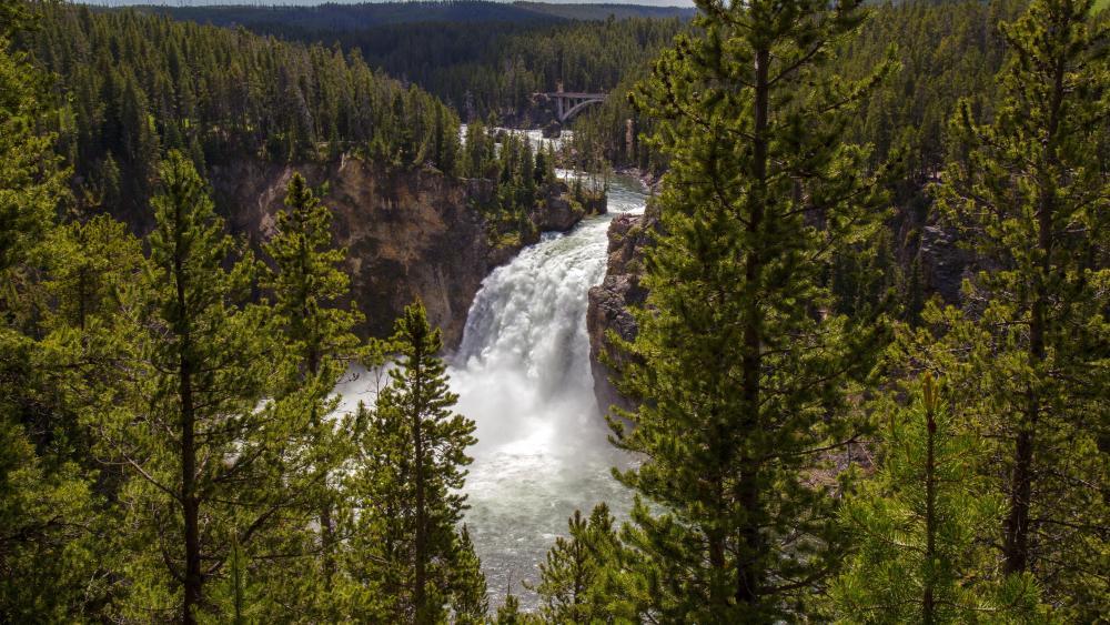 Upper Yellowstone Falls wallpaper