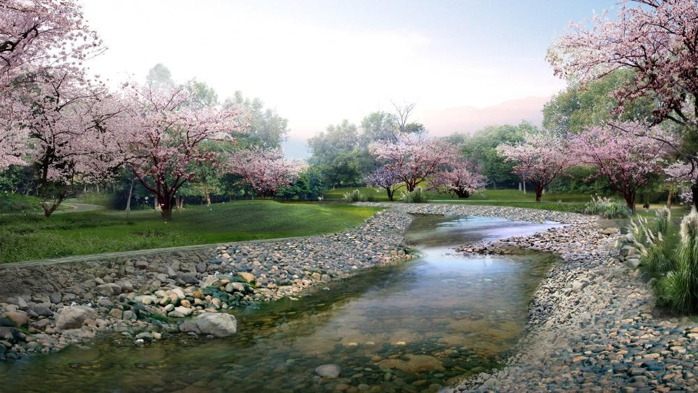 Sakura blossom wallpaper