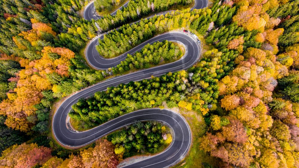 Winding road wallpaper