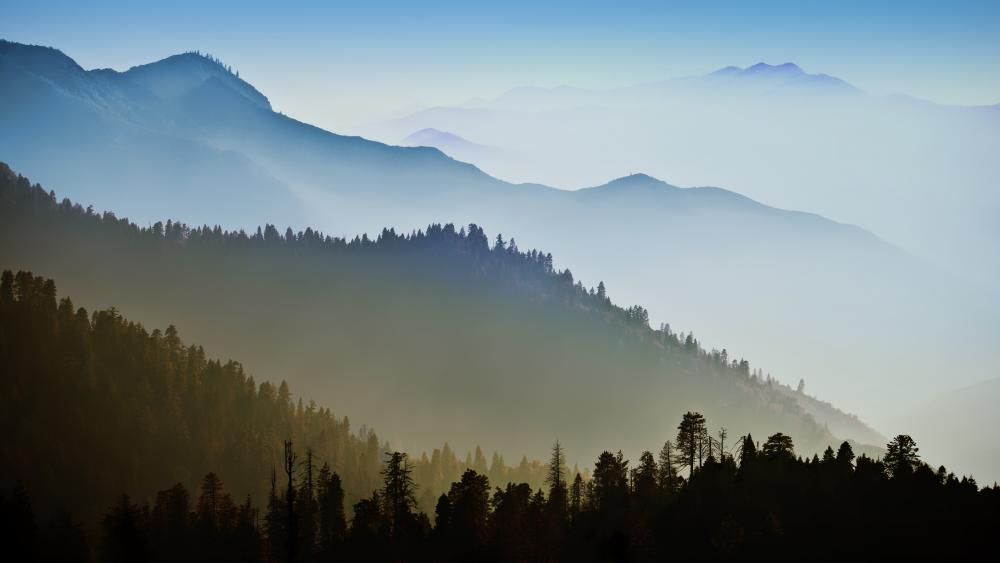 Foggy ridges wallpaper