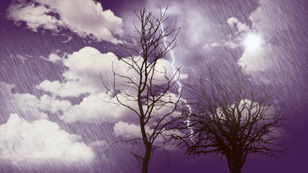 Through the storm wallpaper