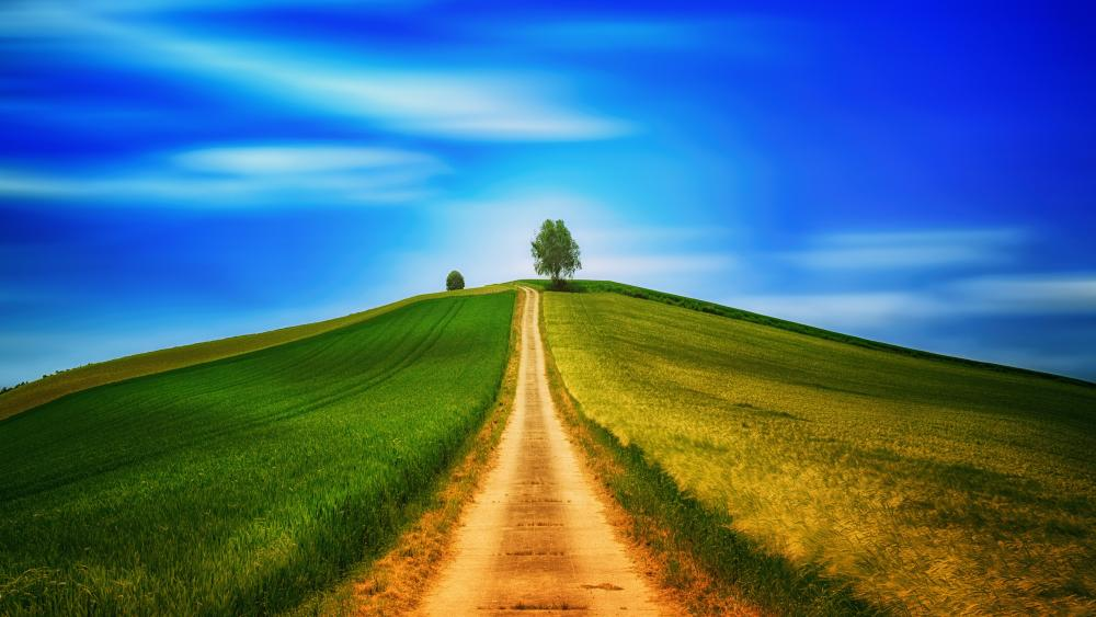 Road to a hill wallpaper