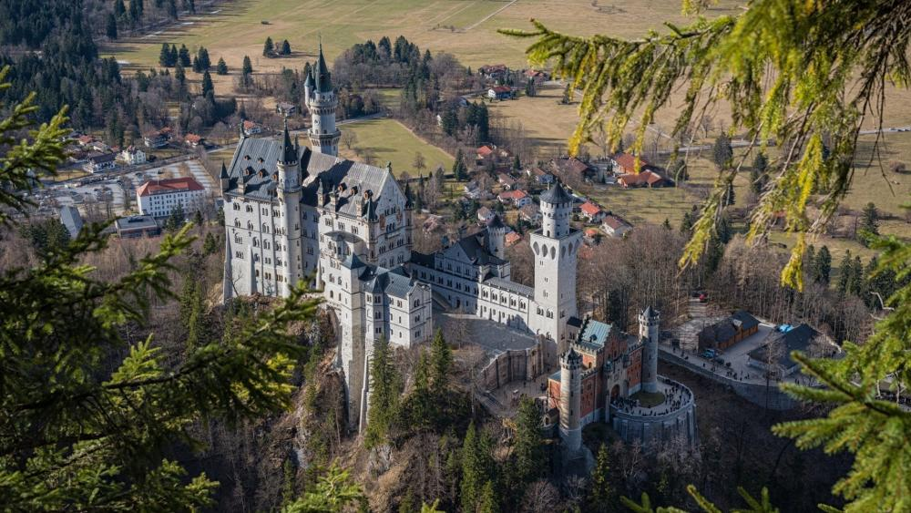 Beautiful view of the Neuschwanstein Castle among the pines wallpaper