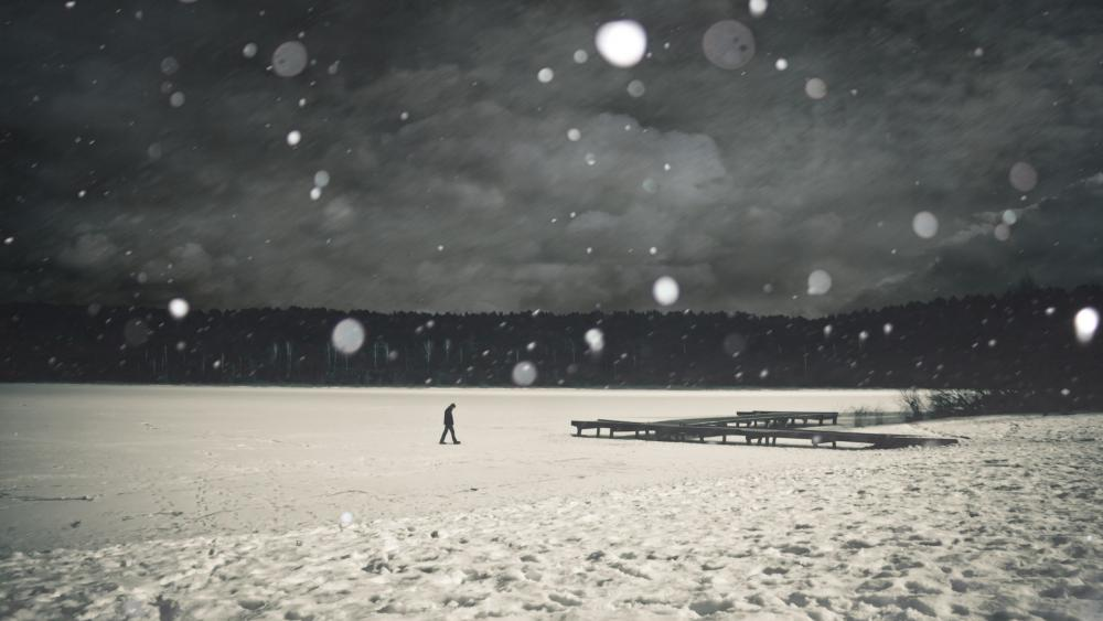 Monochrome winter scenery wallpaper