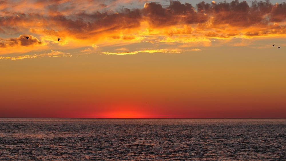 Sundown Over the Ocean wallpaper