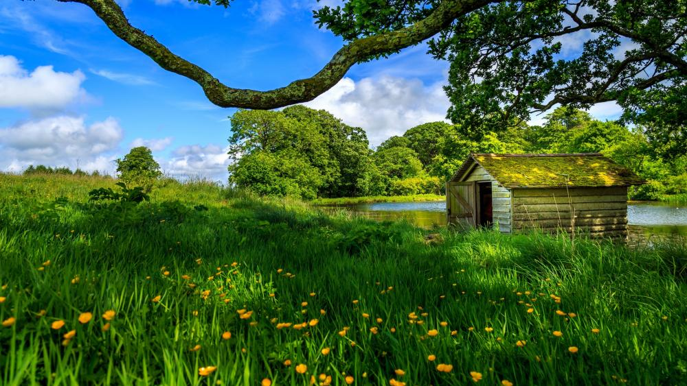 A shanty by the lake wallpaper