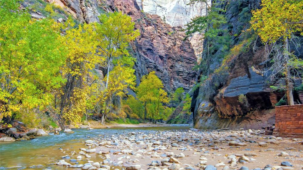 Zion National Park, Virgin River wallpaper