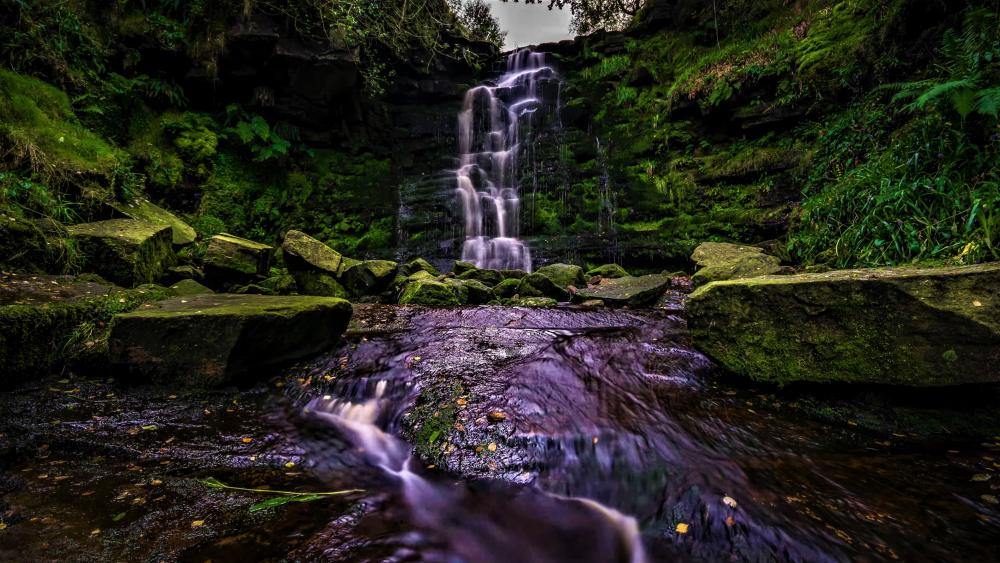 Waterfall in the green nature wallpaper