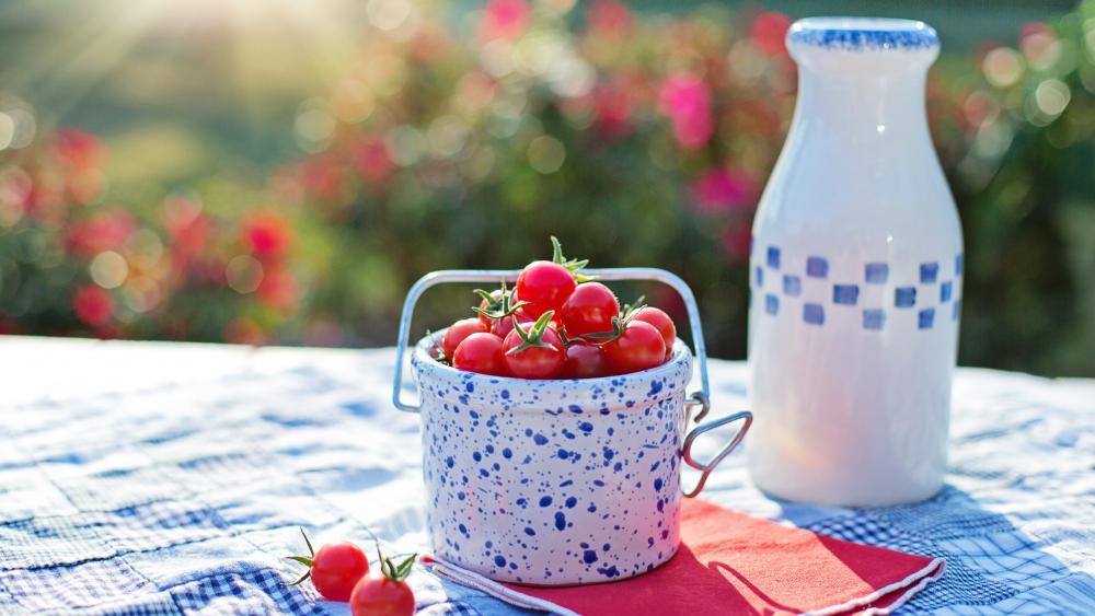 A small bucket of cherry tomatoe wallpaper