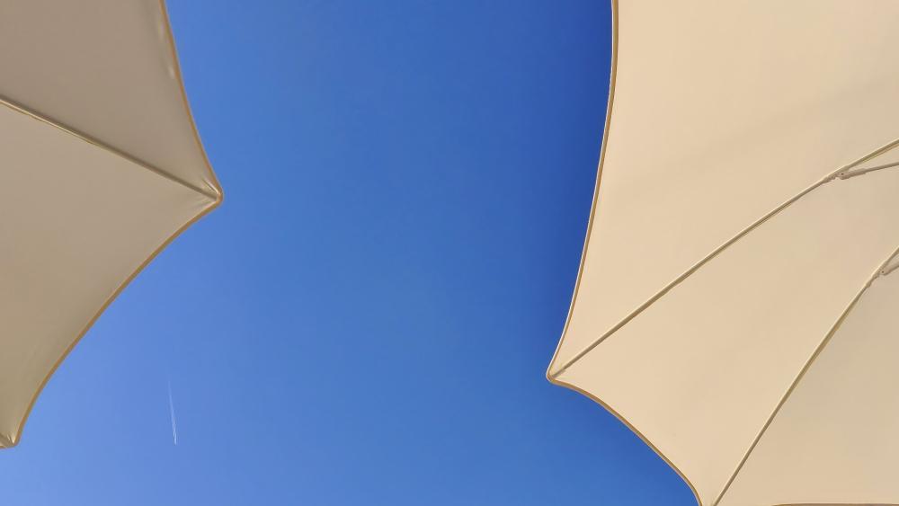 White umbrellas wallpaper