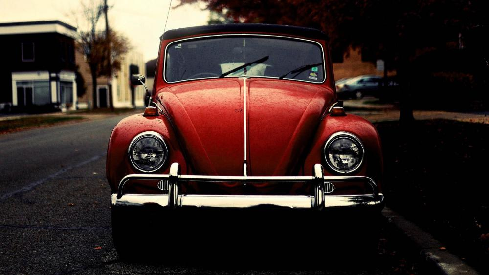 Red Volkswagen Beetle vintage car :) wallpaper