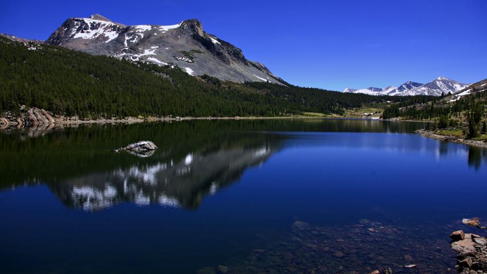 Yosemite National Park, Tioga Lake wallpaper