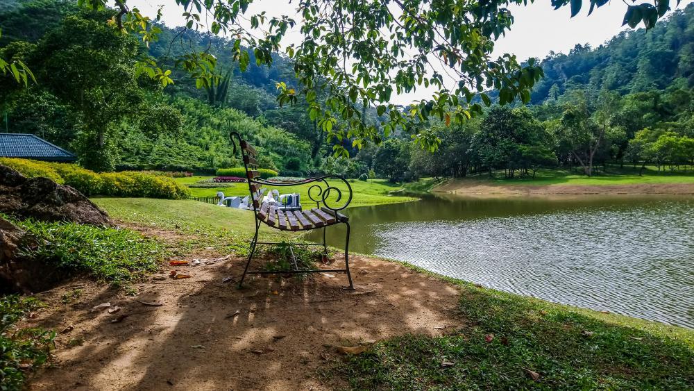 Garden bench, Seethawaka wallpaper
