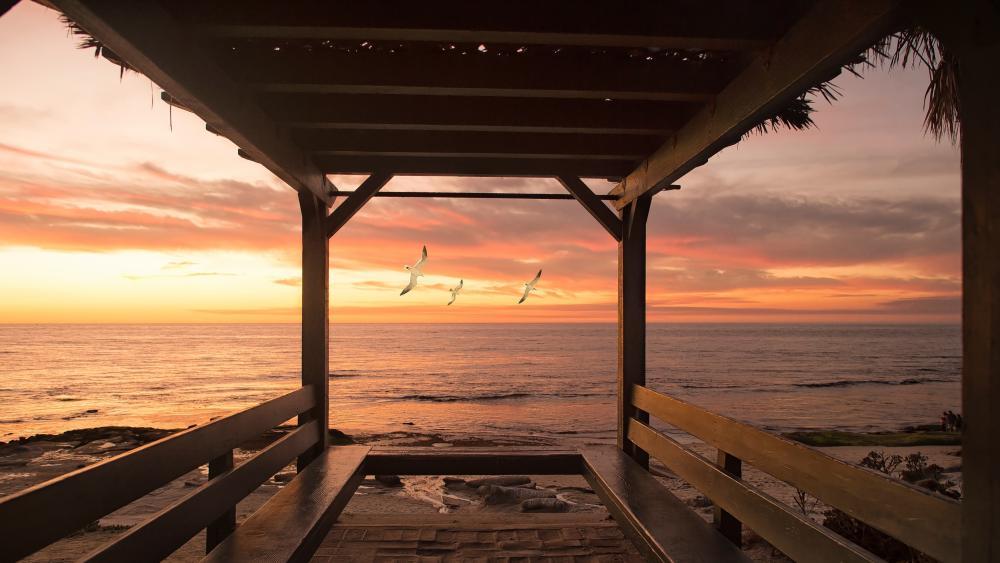 Beautiful Sea Side Birds Flying wallpaper