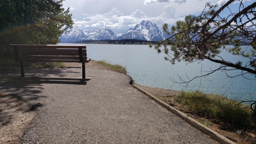 A bench overlooking the Mount Moran wallpaper