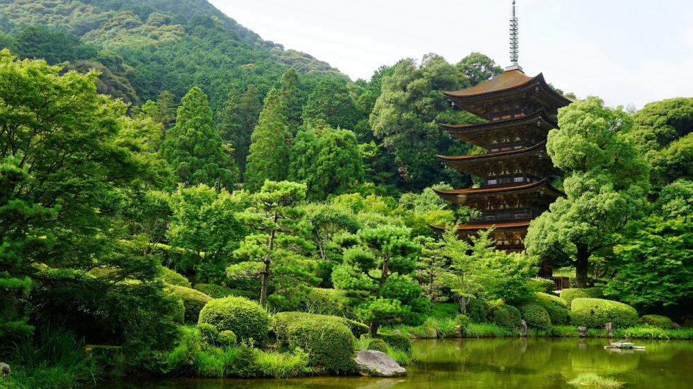 Ruriko-ji Temple, Japan wallpaper